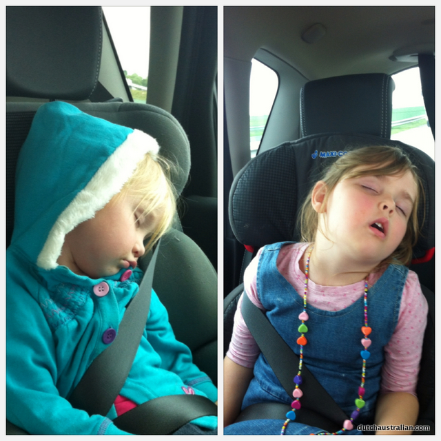 napping in car