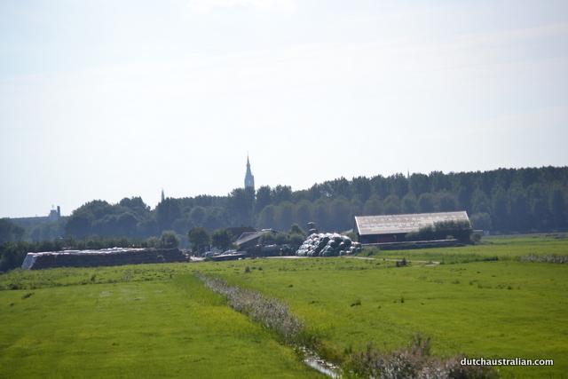 biesland landscape