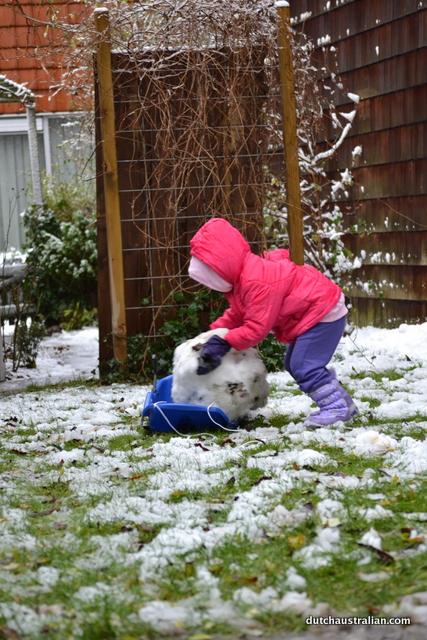 pushing onto the sled