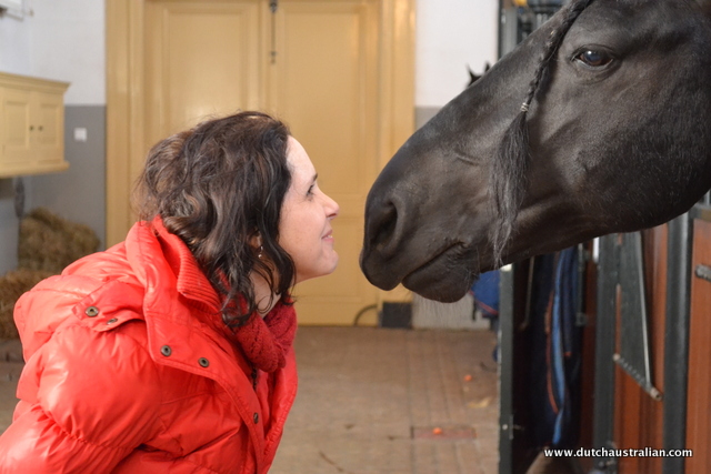royal horse smooch